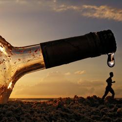 Вредные последствия алкоголизма